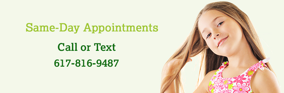 NitWits Professional Head Lice Removal Specialists - Same Day Appointments - Call or Text: 617-816-9487 - Email: nitwitsinfo@gmail.com