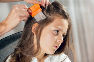 Do I have Lice?