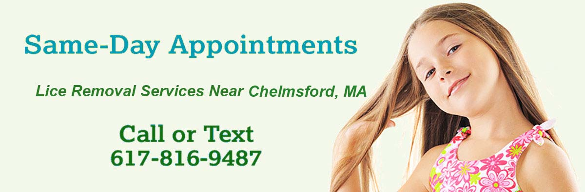 most effective head lice treatment Chelmsford MA
